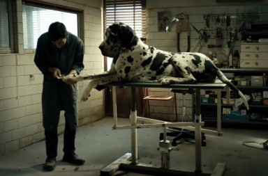 dogman-cannes-review
